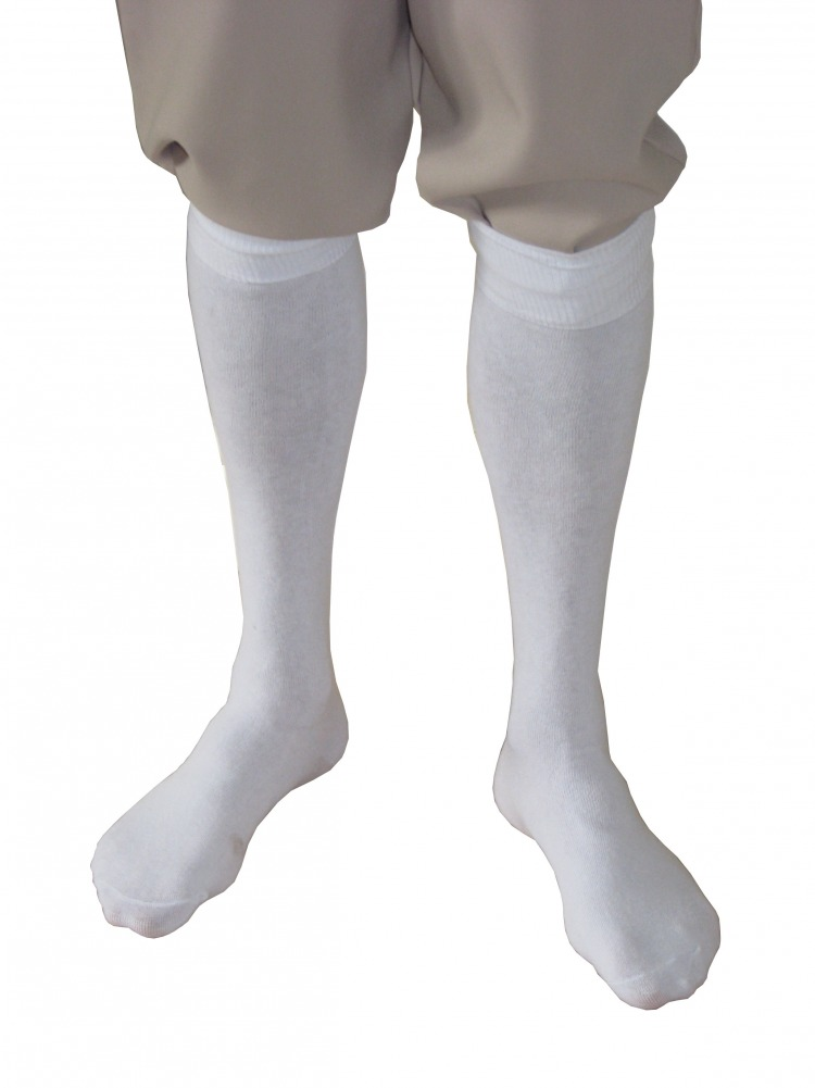 Men's Regency Mr. Darcy Georgian Victorian Edwardian Knee Length White Stockings Image