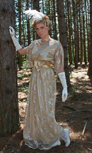 Ladies Edwardian Downton Abbey Titanic Gown Size 12 - 14 Image