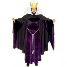 Ladies Evil Queen Sleeping Beauty Costume Size 10 - 12