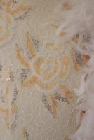 Ladies Cream Victorian Regency Lacy Gloves