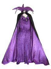 Ladies Evil Queen Sleeping Beauty Costume Size 14 - 16